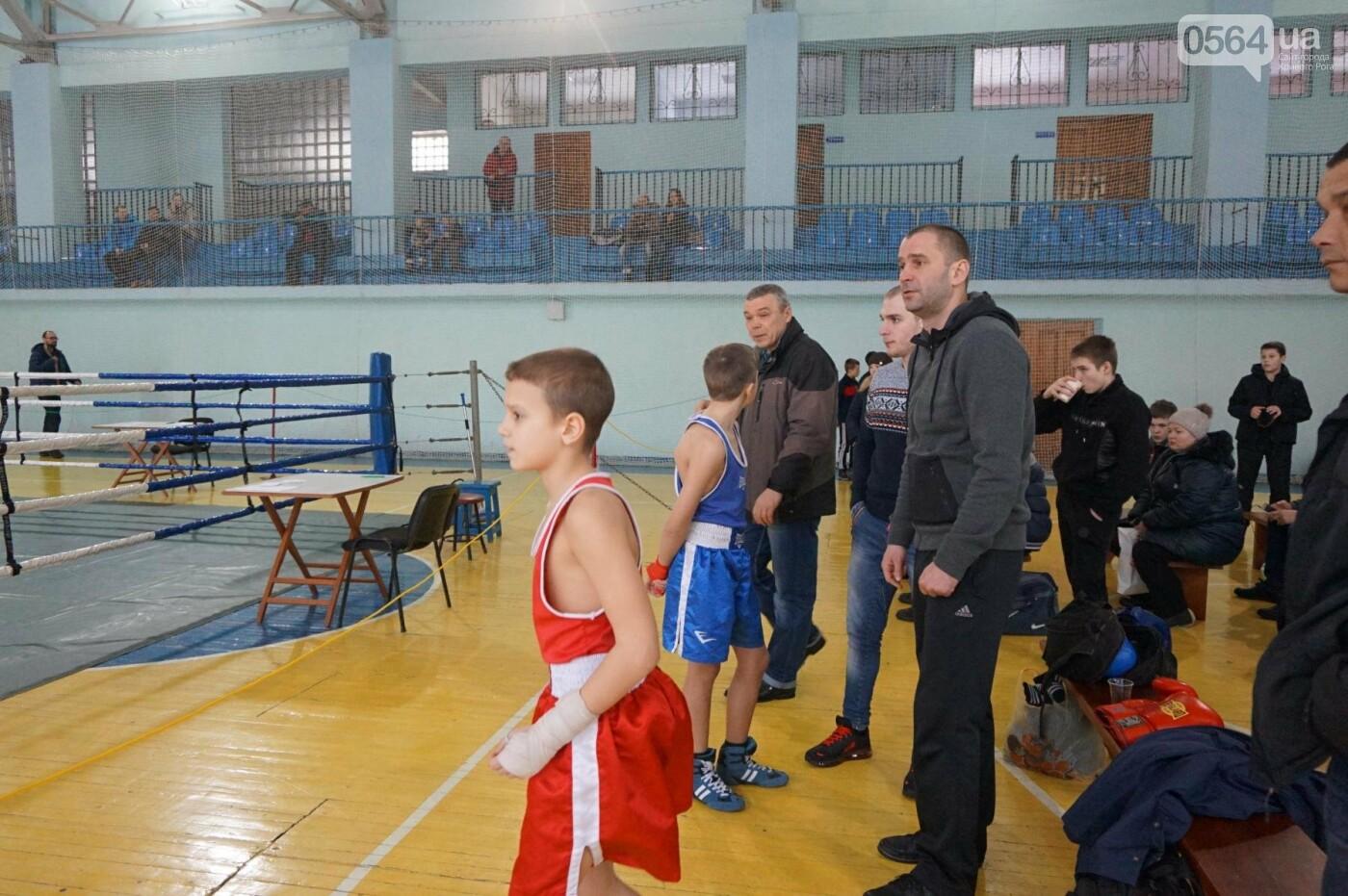 В Кривом Роге состоялся Международный турнир по боксу (ФОТО, ВИДЕО), фото-53