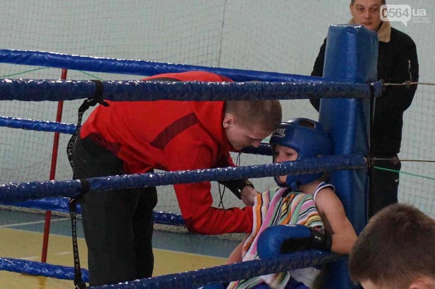 В Кривом Роге состоялся Международный турнир по боксу (ФОТО, ВИДЕО), фото-25