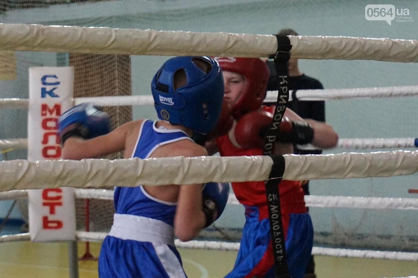 В Кривом Роге состоялся Международный турнир по боксу (ФОТО, ВИДЕО), фото-21