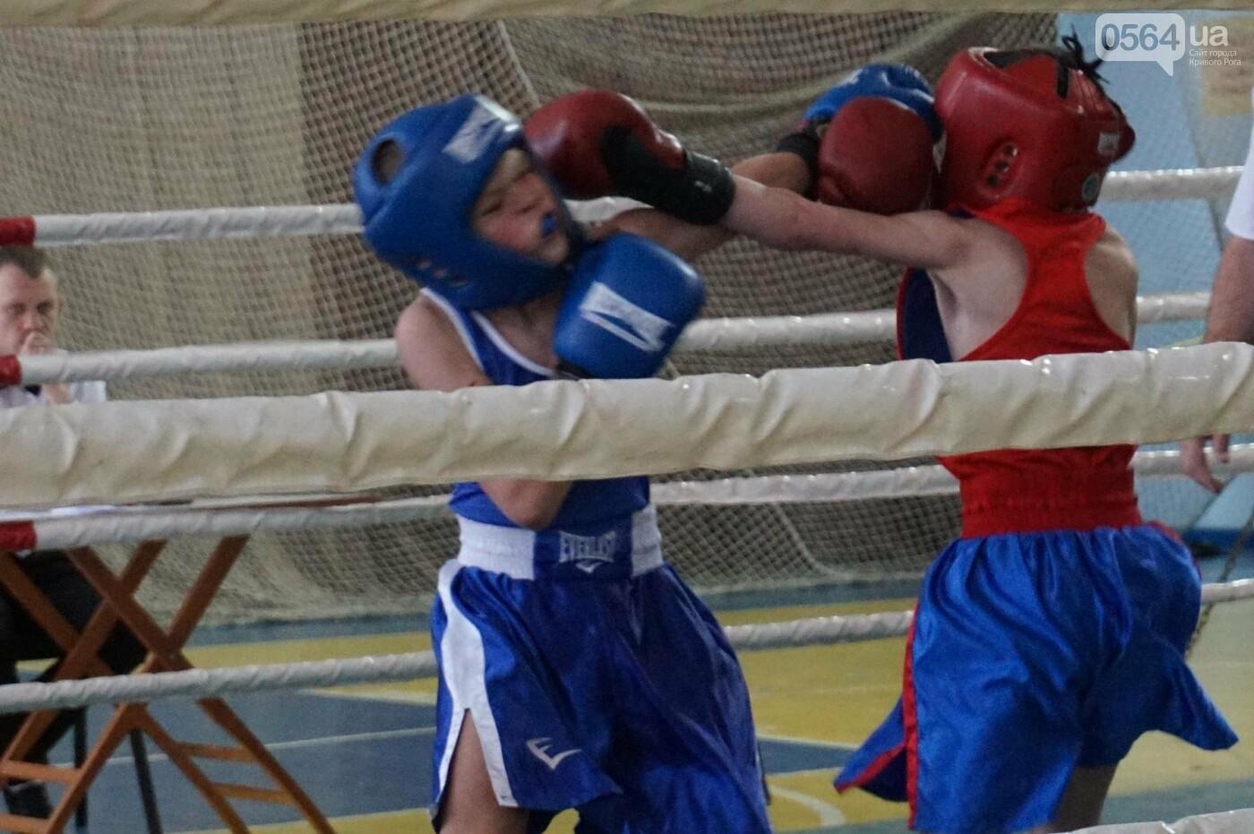 В Кривом Роге состоялся Международный турнир по боксу (ФОТО, ВИДЕО), фото-29