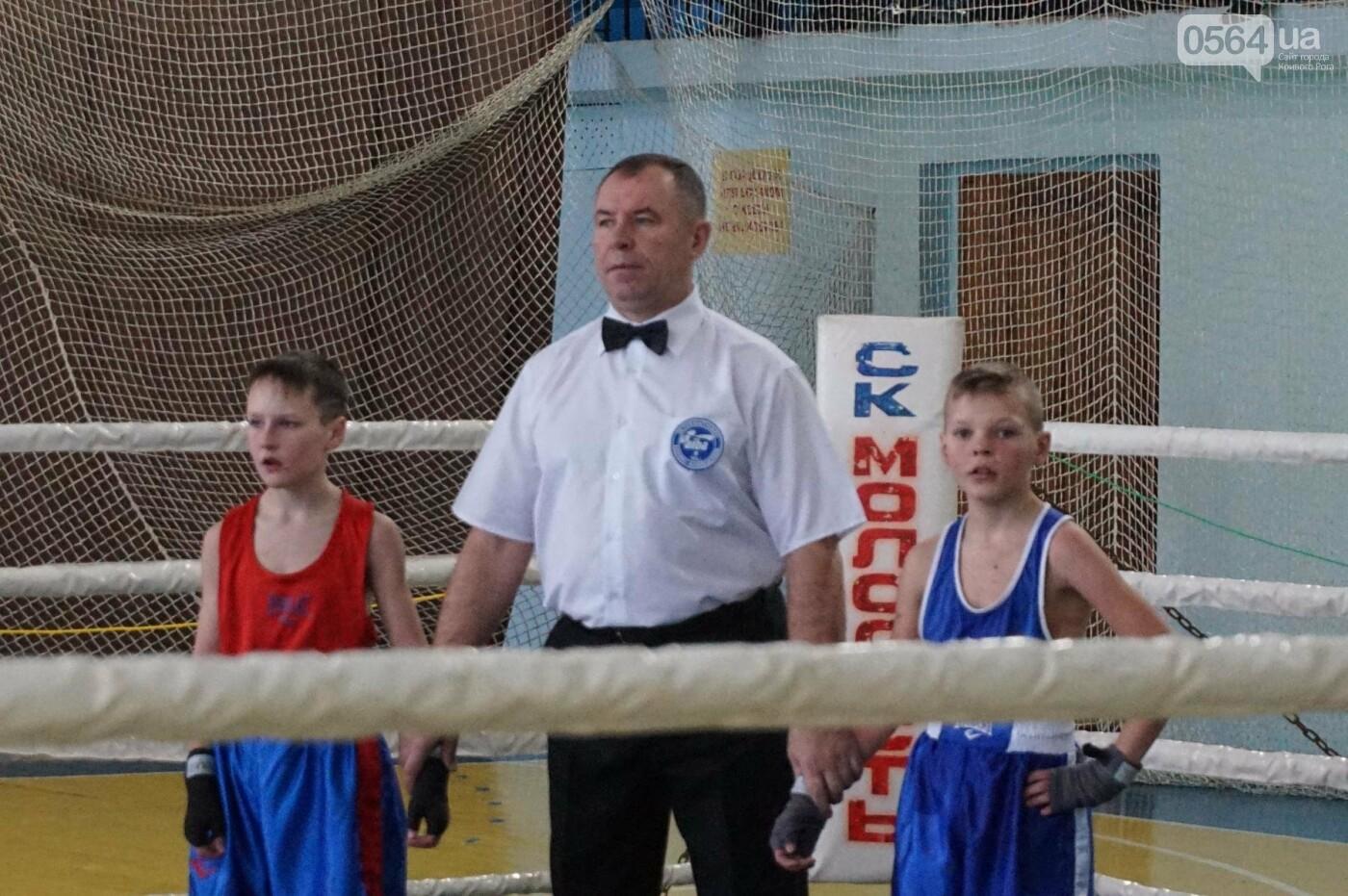 В Кривом Роге состоялся Международный турнир по боксу (ФОТО, ВИДЕО), фото-49