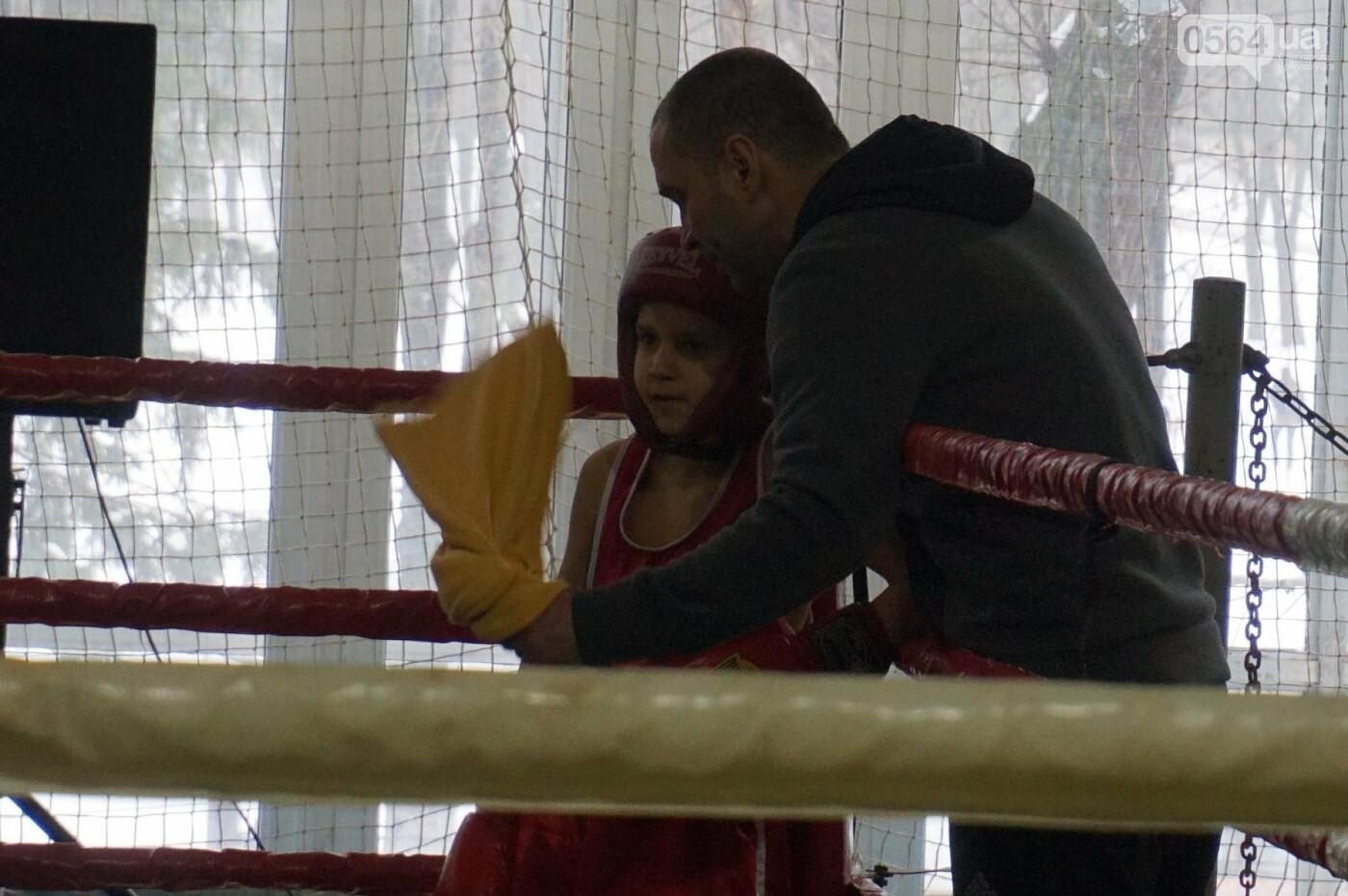 В Кривом Роге состоялся Международный турнир по боксу (ФОТО, ВИДЕО), фото-15