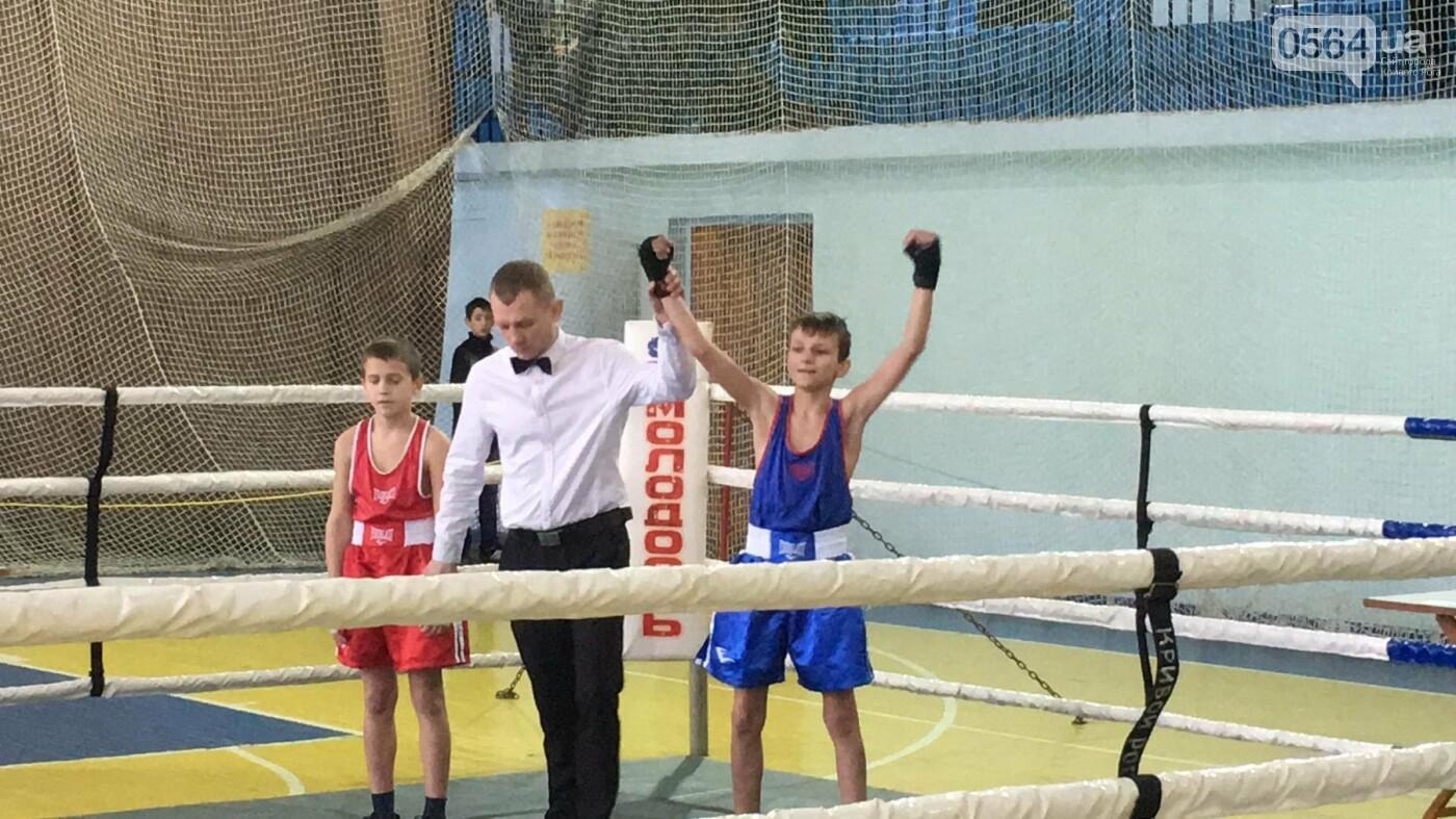 В Кривом Роге состоялся Международный турнир по боксу (ФОТО, ВИДЕО), фото-1