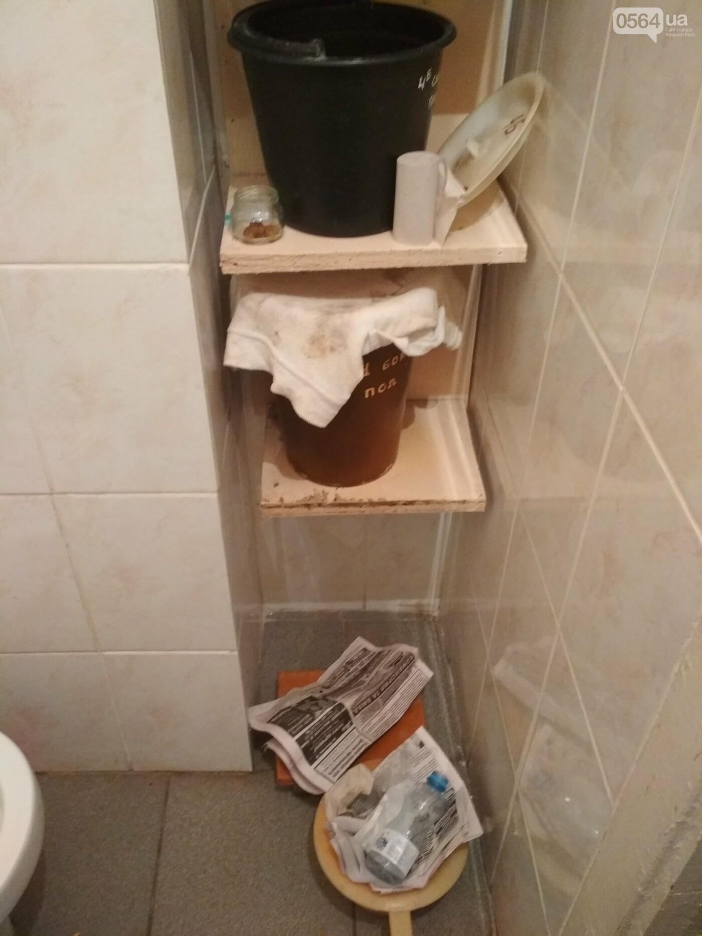 """Петиция: Криворожане хотят тратить бюджетные средства не на День города, а на """"инфекционку"""" (ФОТО), фото-3"""