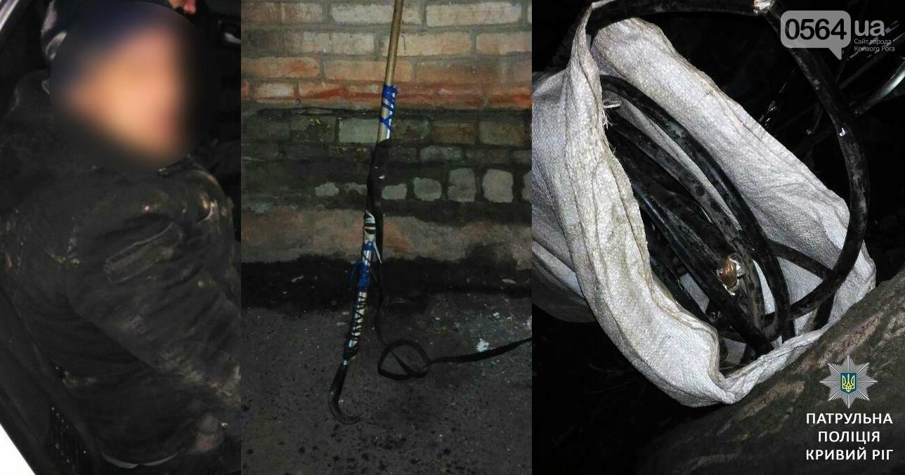 Происшествия в Кривом Роге: кражи, наркотики, боеприпасы (ФОТО), фото-3