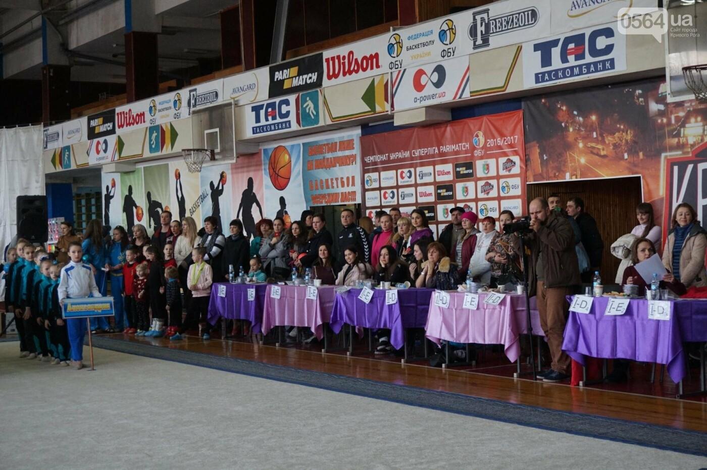 Праздник красоты и грации состоялся в Кривом Роге (ФОТО), фото-52