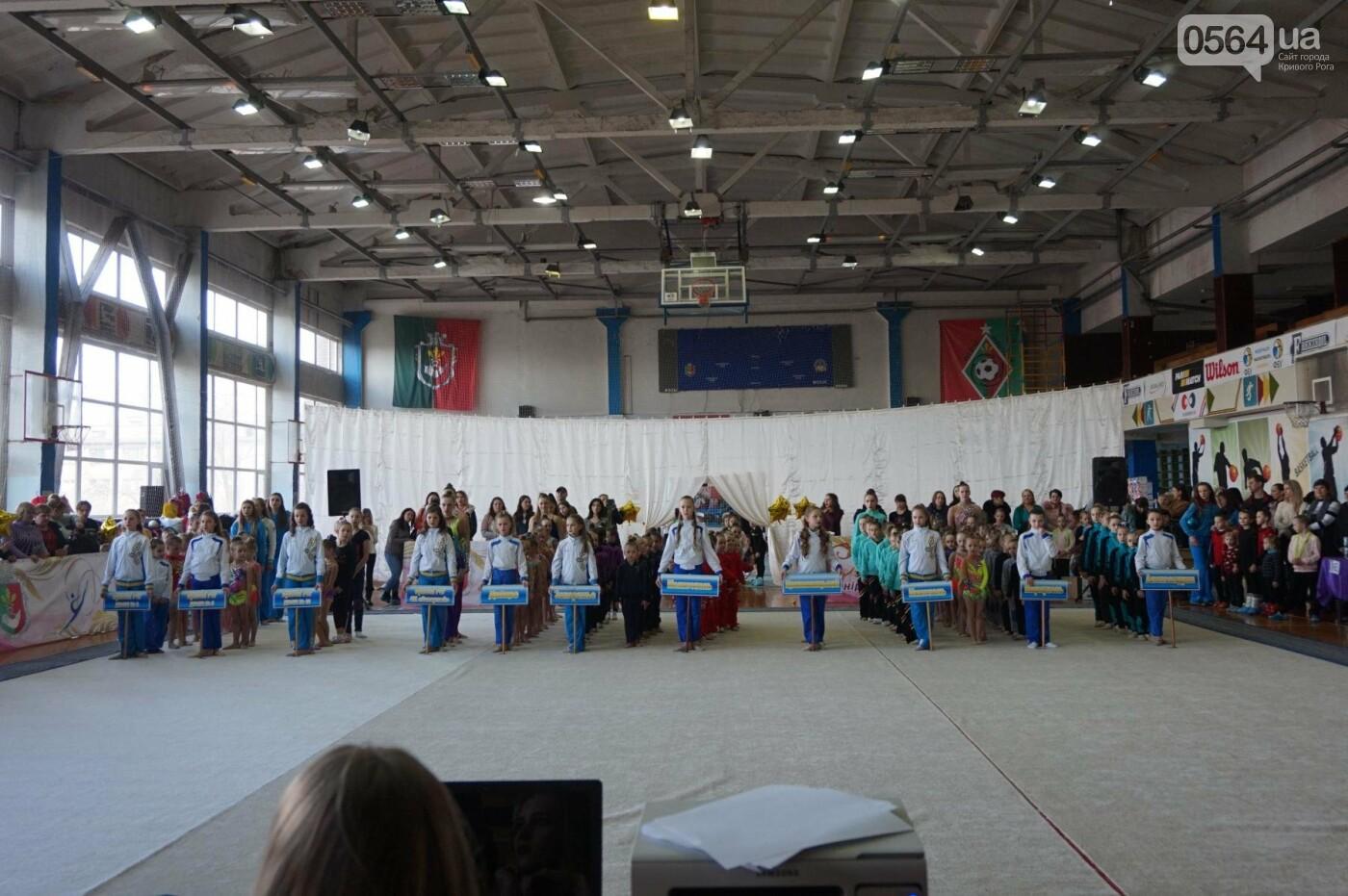 Праздник красоты и грации состоялся в Кривом Роге (ФОТО), фото-33
