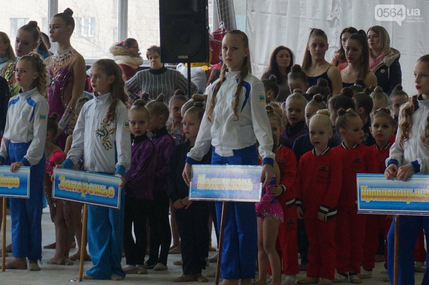 Праздник красоты и грации состоялся в Кривом Роге (ФОТО), фото-25