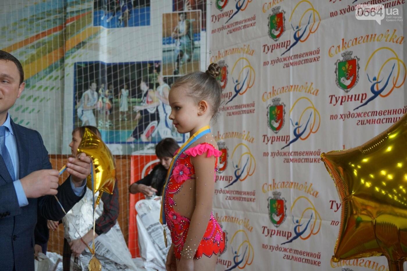 Праздник красоты и грации состоялся в Кривом Роге (ФОТО), фото-43