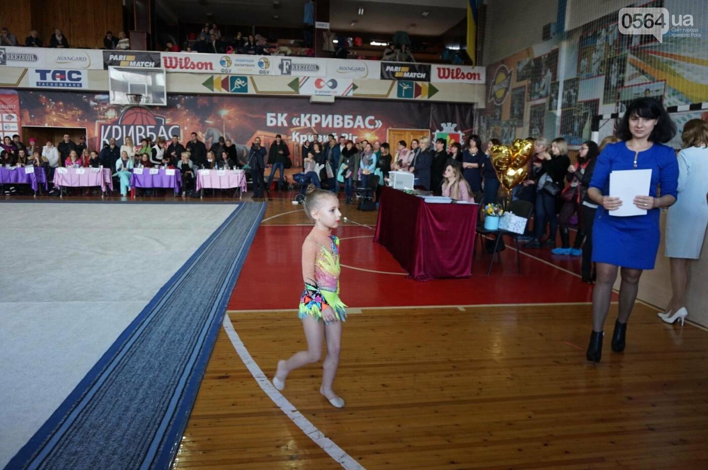 Праздник красоты и грации состоялся в Кривом Роге (ФОТО), фото-45