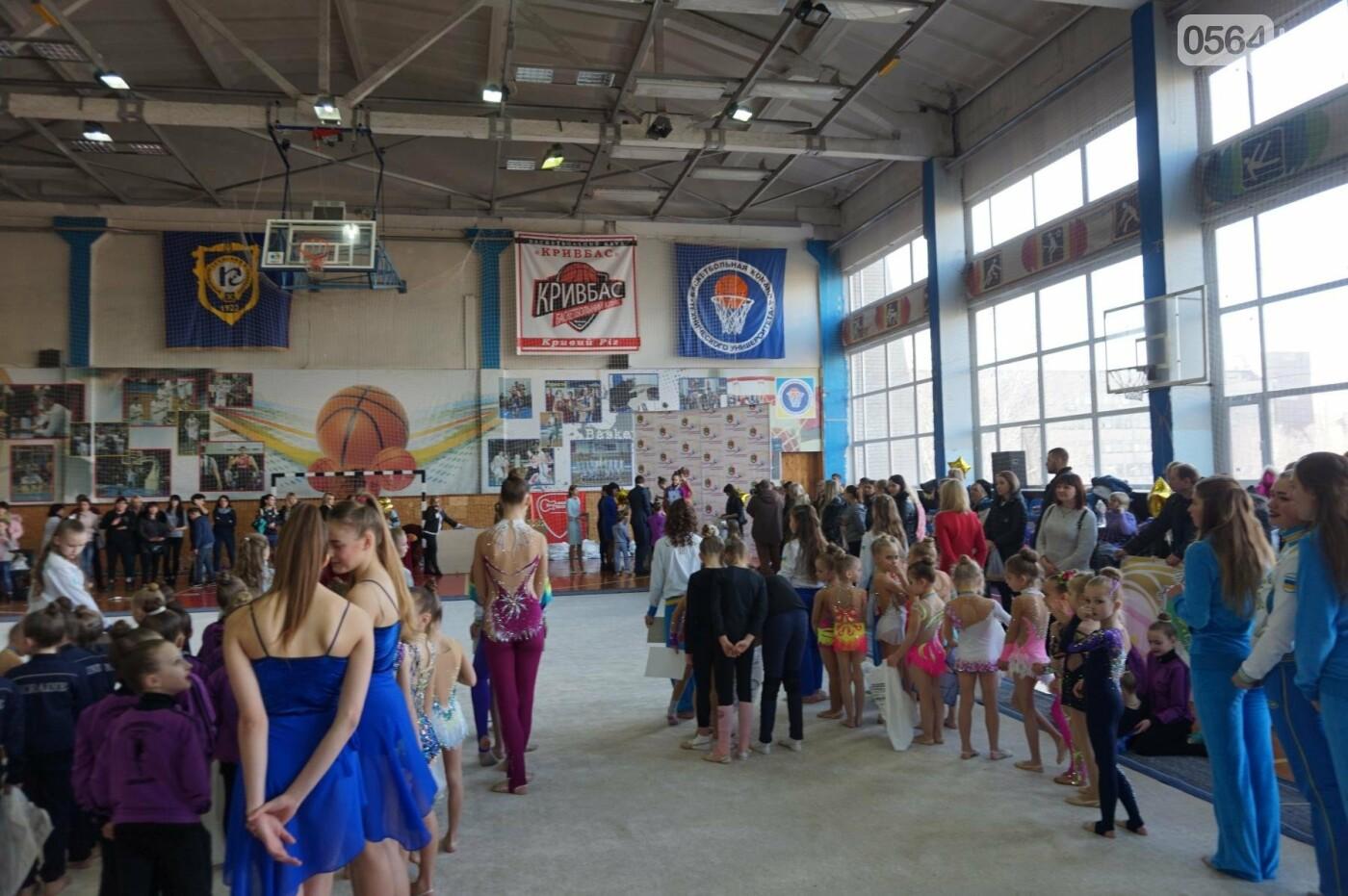 Праздник красоты и грации состоялся в Кривом Роге (ФОТО), фото-30