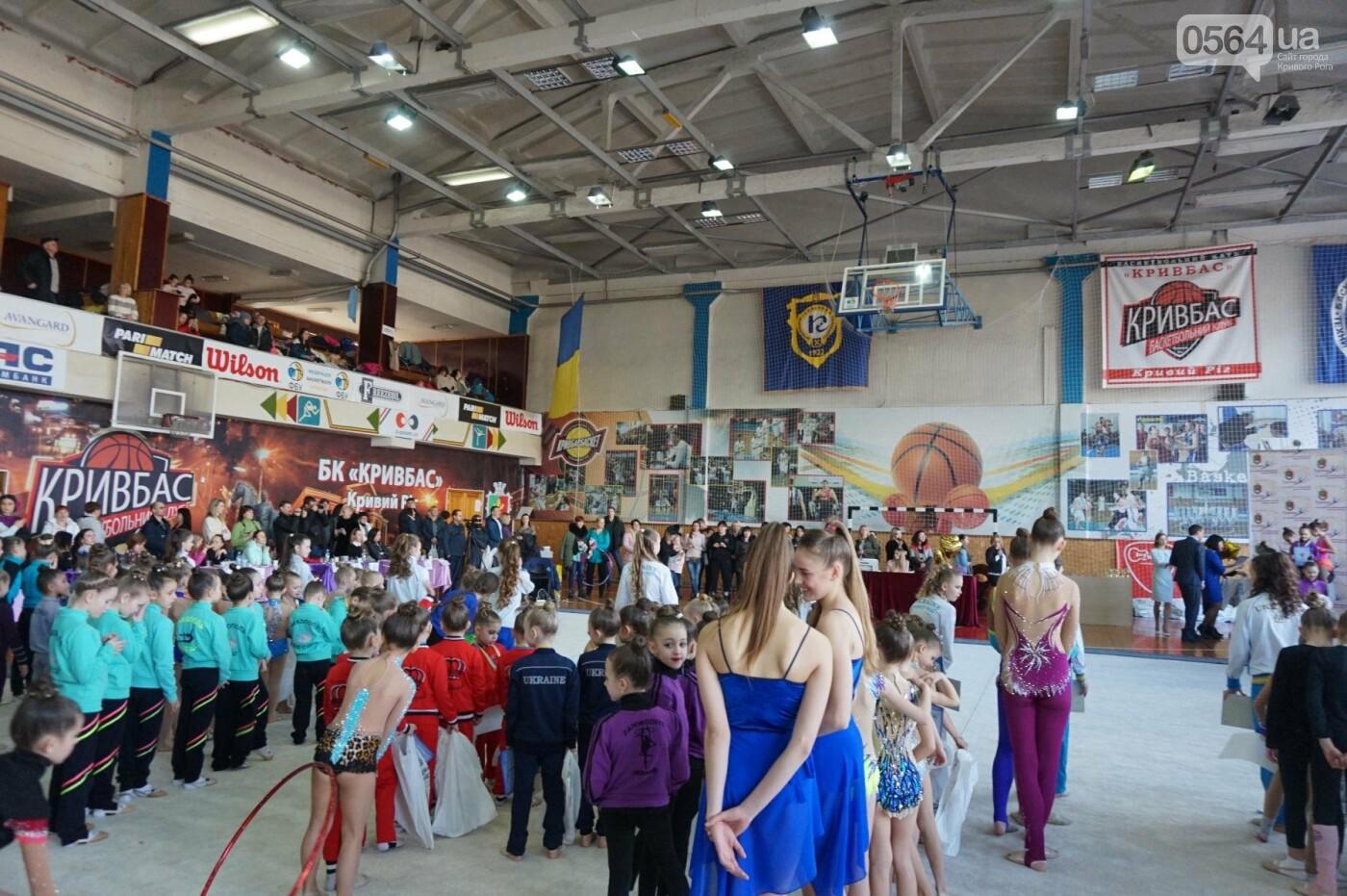 Праздник красоты и грации состоялся в Кривом Роге (ФОТО), фото-79