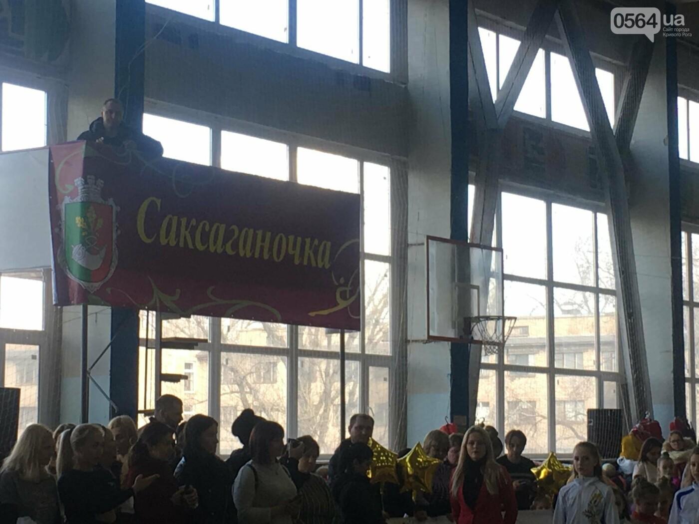 Праздник красоты и грации состоялся в Кривом Роге (ФОТО), фото-1