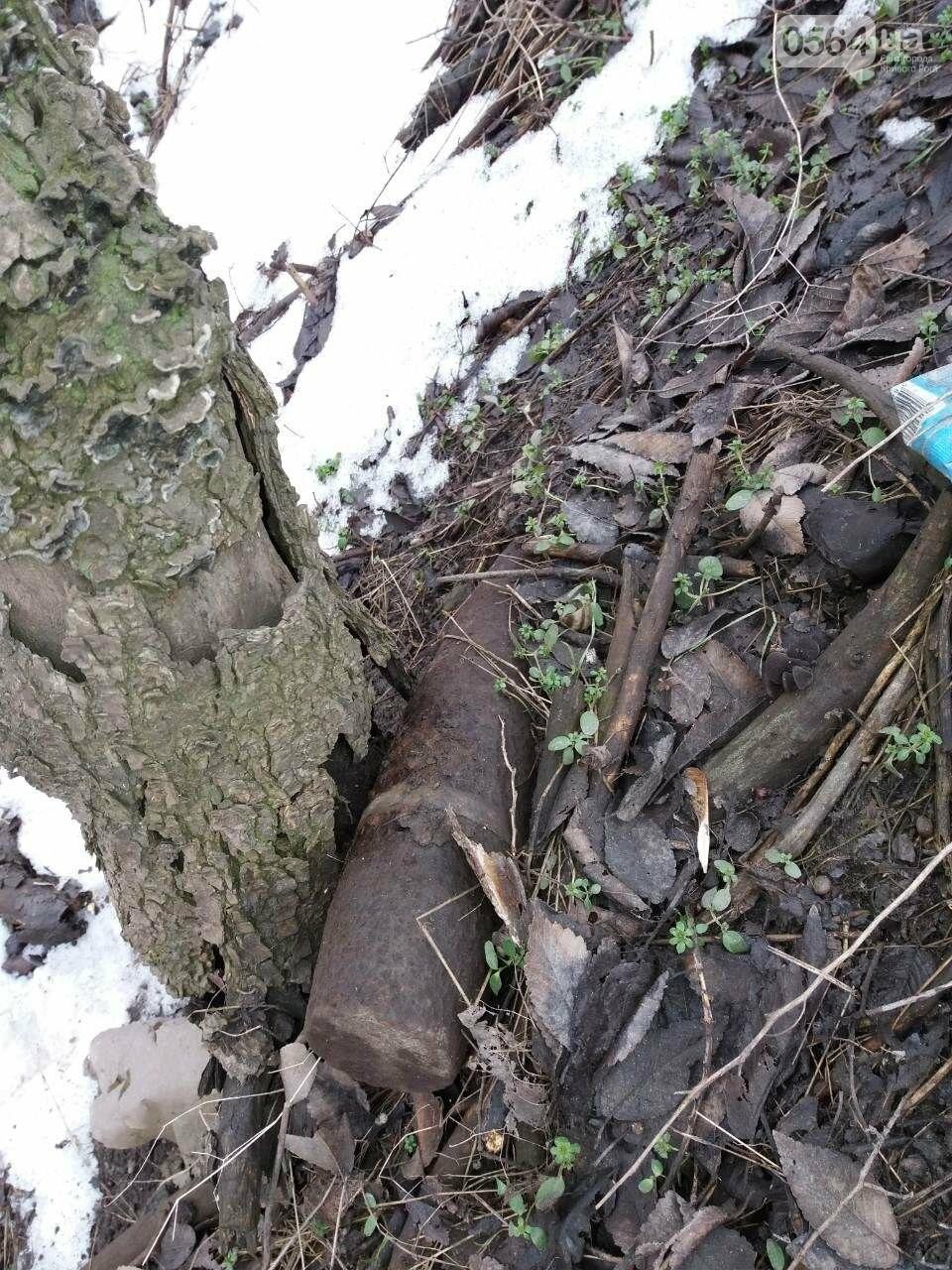 Криворожанин обнаружил на кладбище взрывоопасный предмет времен Второй мировой (ФОТО), фото-1
