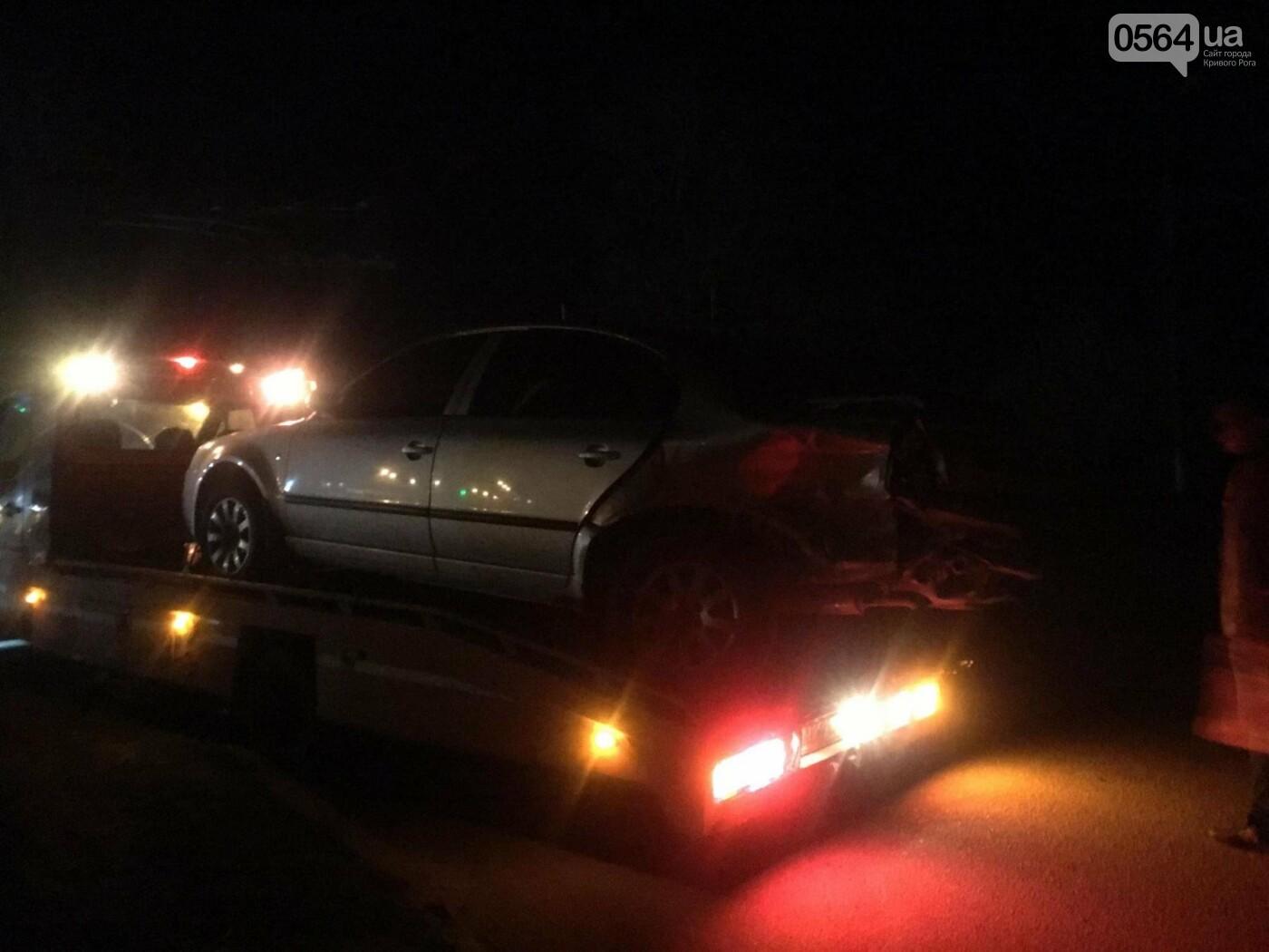 В результате ДТП в Кривом Роге пострадали два пешехода (ФОТО), фото-2