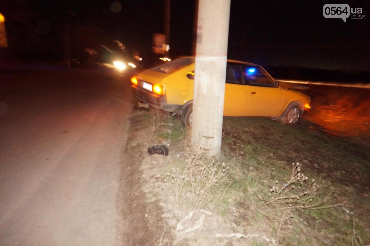 В результате ДТП в Кривом Роге пострадали два пешехода (ФОТО), фото-6