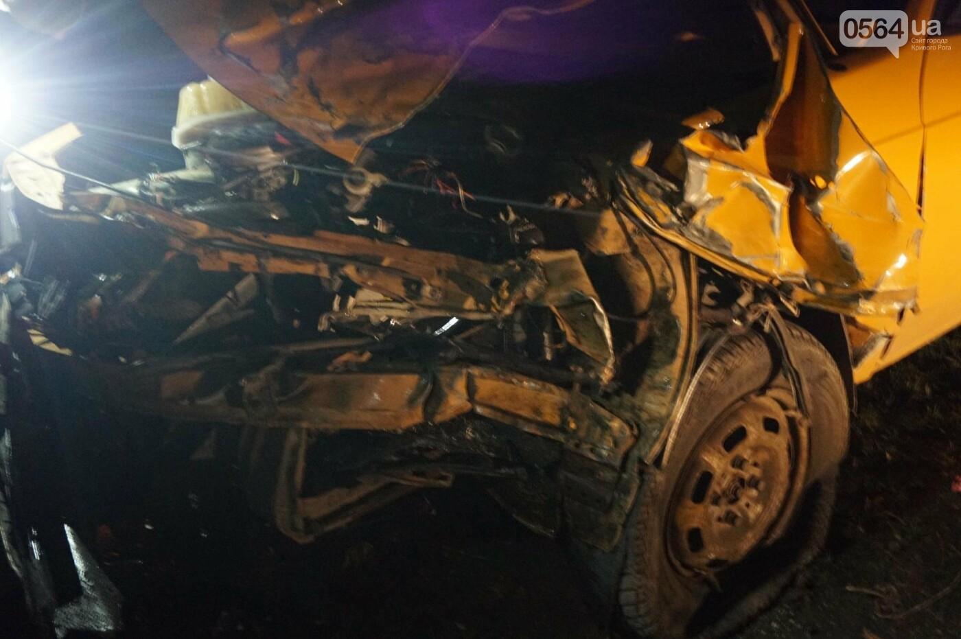 В результате ДТП в Кривом Роге пострадали два пешехода (ФОТО), фото-8