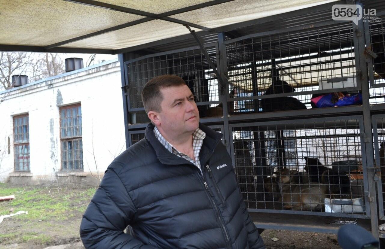 Под Кривым Рогом провели бескровную стерилизацию и вакцинацию бездомных собак в операционной на колесах (ФОТО, ВИДЕО), фото-21