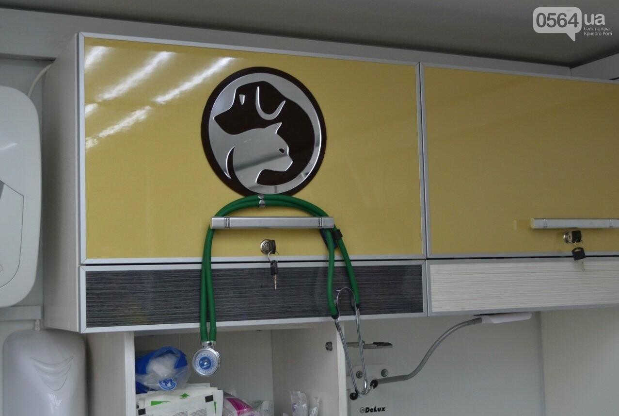 Под Кривым Рогом провели бескровную стерилизацию и вакцинацию бездомных собак в операционной на колесах (ФОТО, ВИДЕО), фото-10