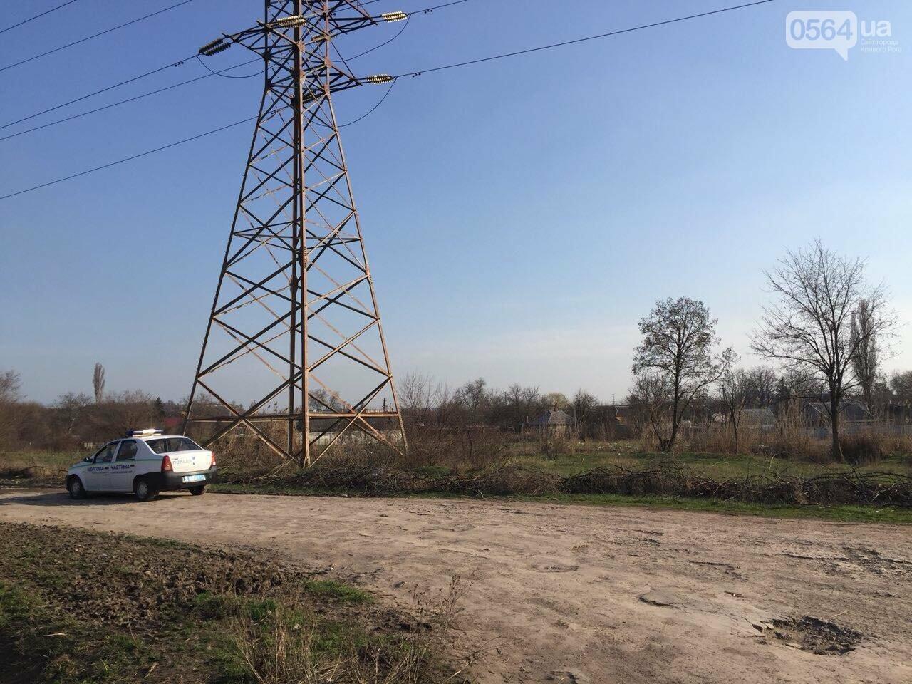 В Кривом Роге на болоте обнаружили труп мужчины (ФОТО 18+), фото-2