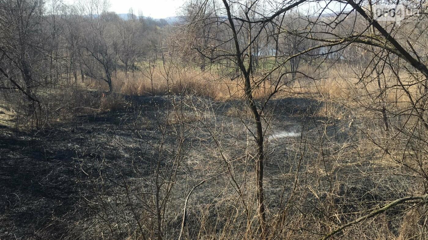 За утро неизвестные несколько раз поджигали сухую траву на 5 Заречном (ФОТО, ВИДЕО), фото-8