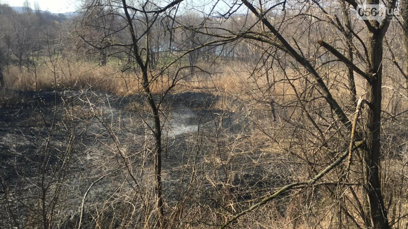 За утро неизвестные несколько раз поджигали сухую траву на 5 Заречном (ФОТО, ВИДЕО), фото-3