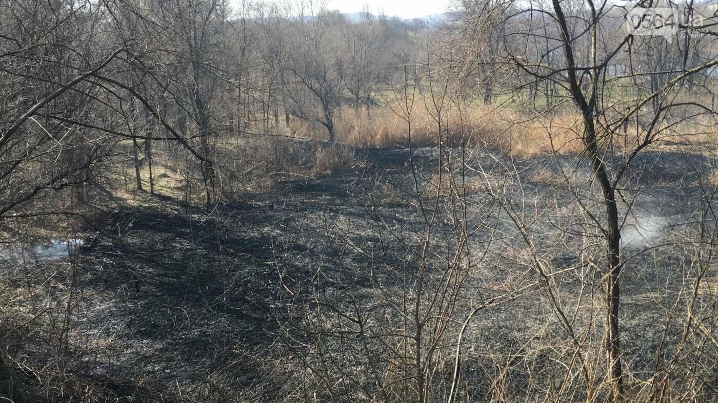 За утро неизвестные несколько раз поджигали сухую траву на 5 Заречном (ФОТО, ВИДЕО), фото-6