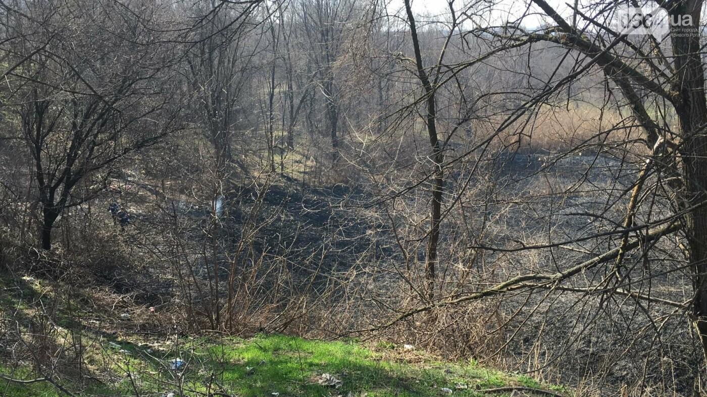За утро неизвестные несколько раз поджигали сухую траву на 5 Заречном (ФОТО, ВИДЕО), фото-9