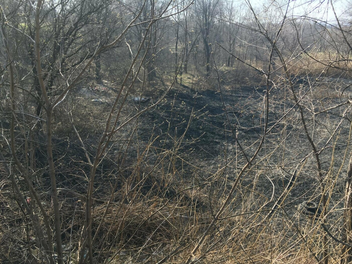 За утро неизвестные несколько раз поджигали сухую траву на 5 Заречном (ФОТО, ВИДЕО), фото-13