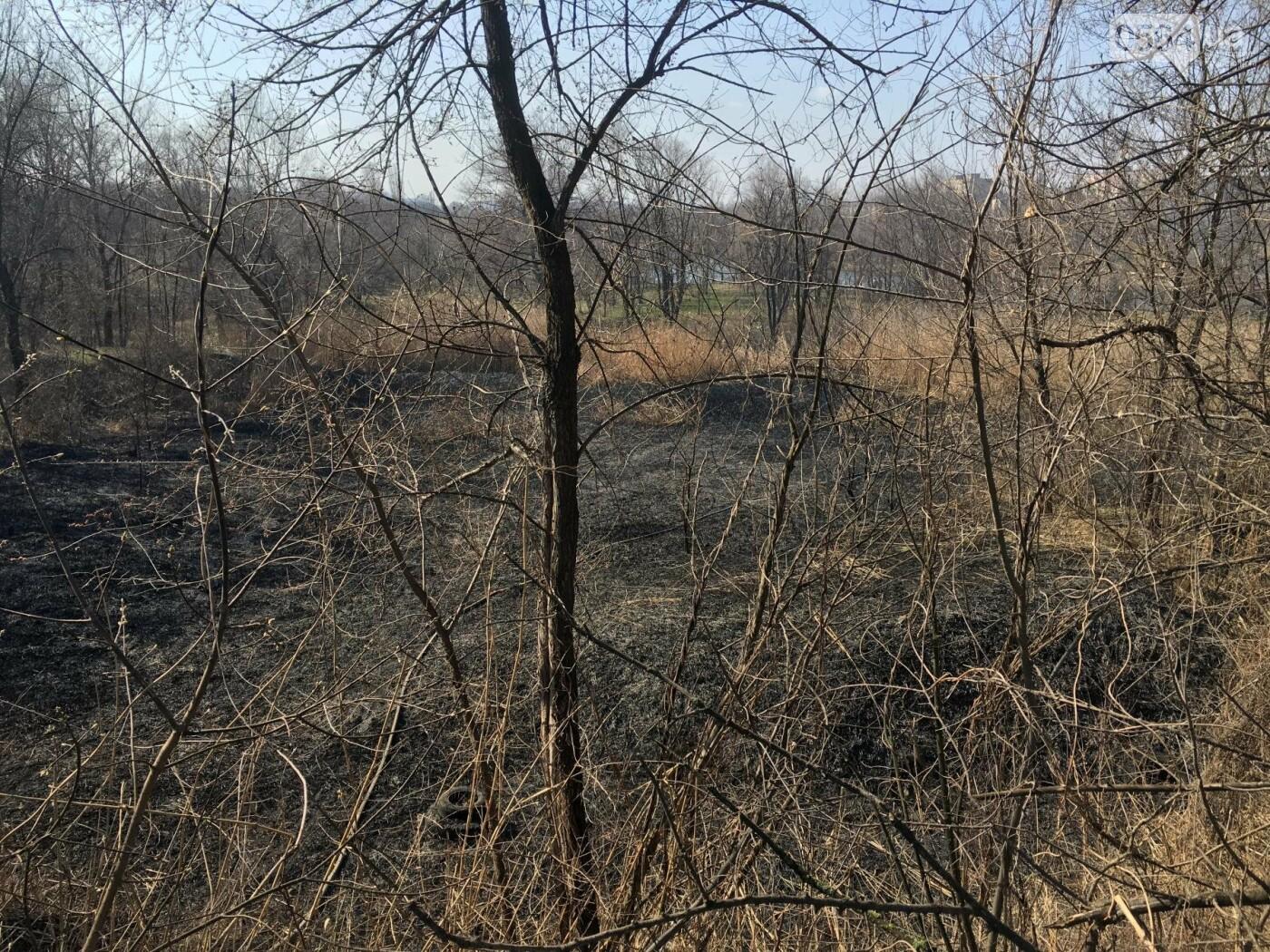 За утро неизвестные несколько раз поджигали сухую траву на 5 Заречном (ФОТО, ВИДЕО), фото-15