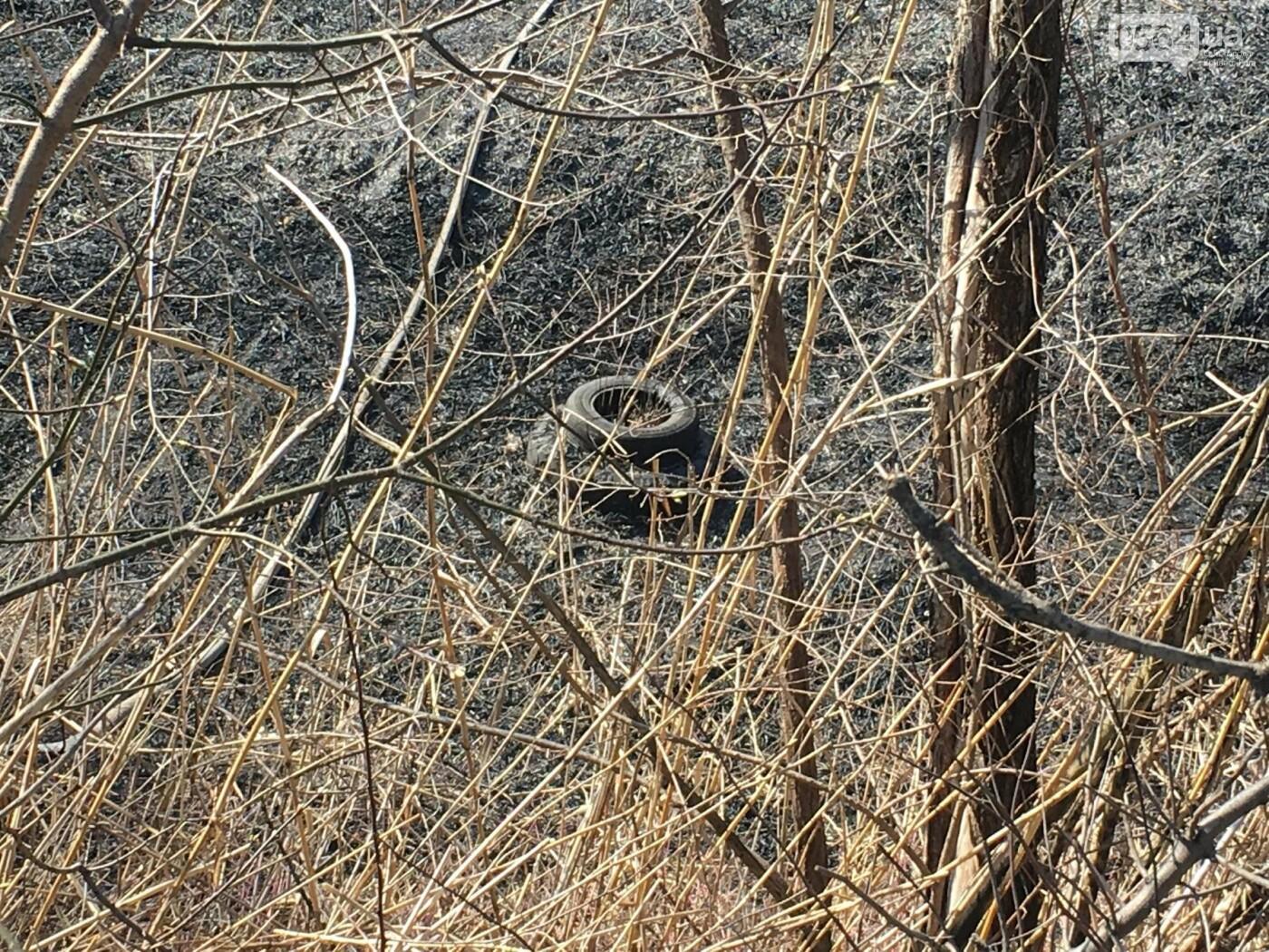 За утро неизвестные несколько раз поджигали сухую траву на 5 Заречном (ФОТО, ВИДЕО), фото-10