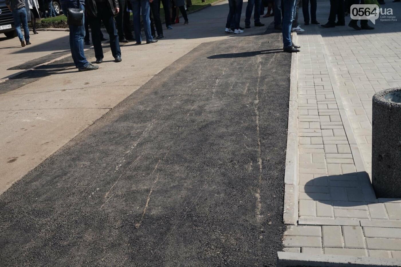 Криворожская правозащитница потребовала отремонтировать остановку так же быстро, как и дорожки перед райисполкомом (ФОТО), фото-12