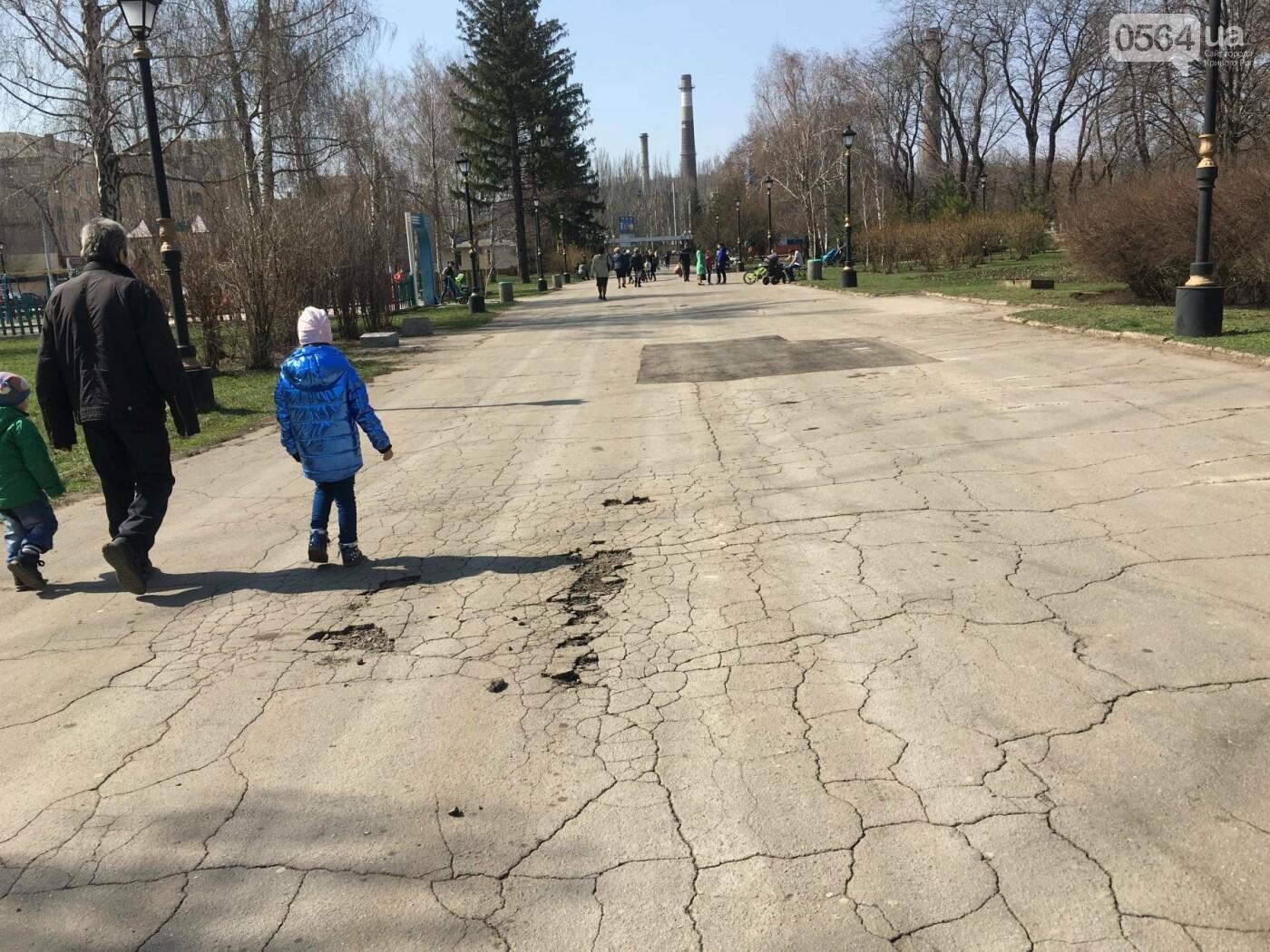 Криворожская правозащитница потребовала отремонтировать остановку так же быстро, как и дорожки перед райисполкомом (ФОТО), фото-18