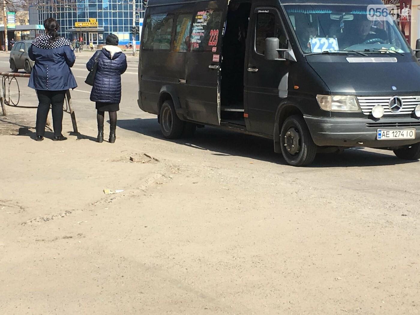 Криворожская правозащитница потребовала отремонтировать остановку так же быстро, как и дорожки перед райисполкомом (ФОТО), фото-2