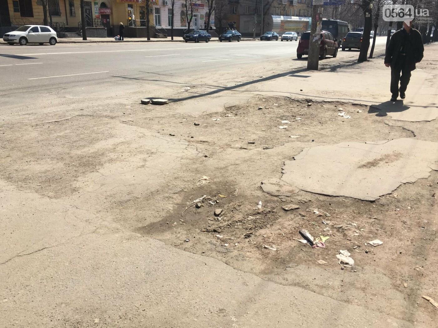 Криворожская правозащитница потребовала отремонтировать остановку так же быстро, как и дорожки перед райисполкомом (ФОТО), фото-9
