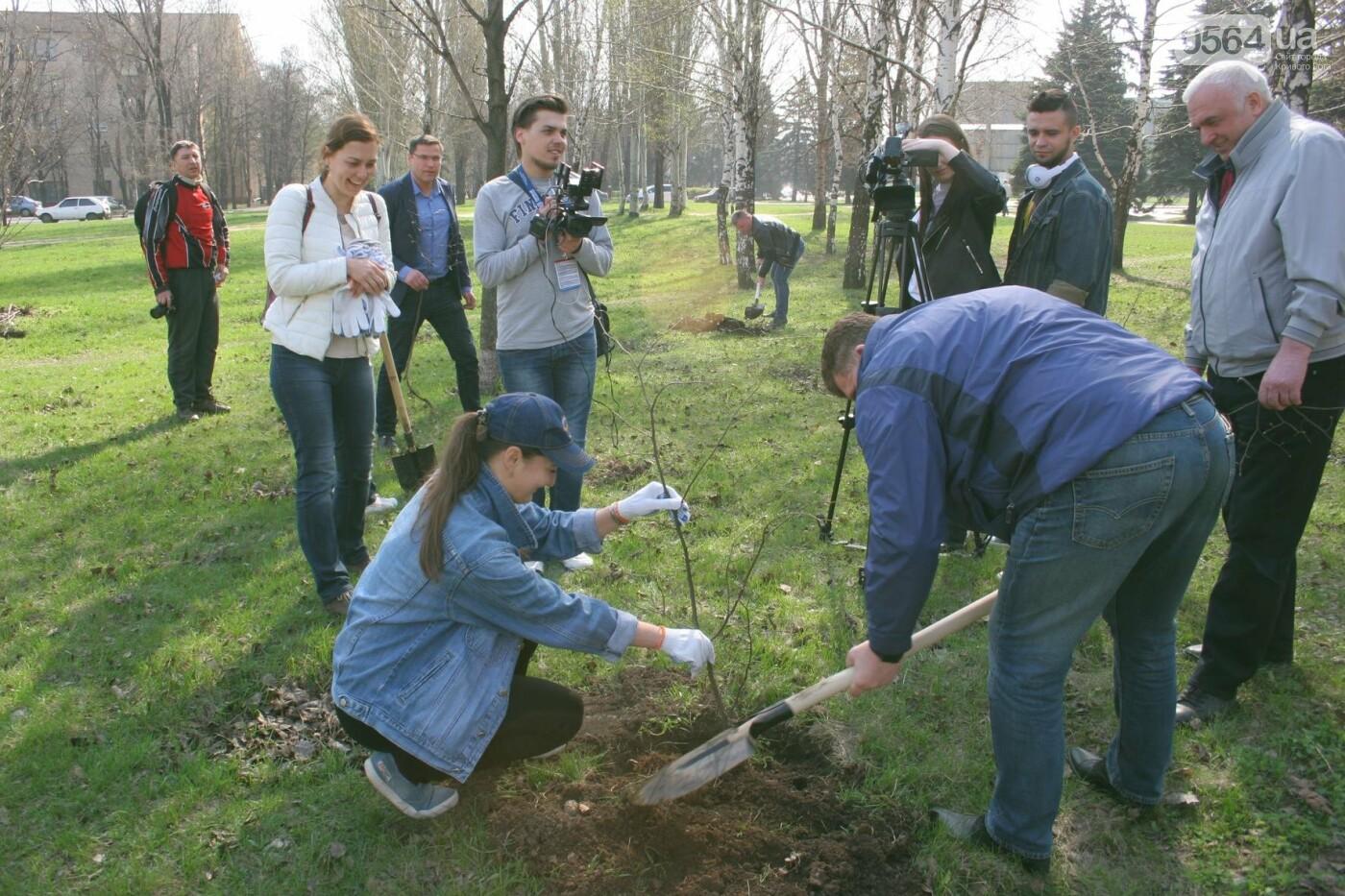 Криворожские журналисты с друзьями высадили более сотни деревьев и вывезли 4 грузовика мусора (ФОТО), фото-16