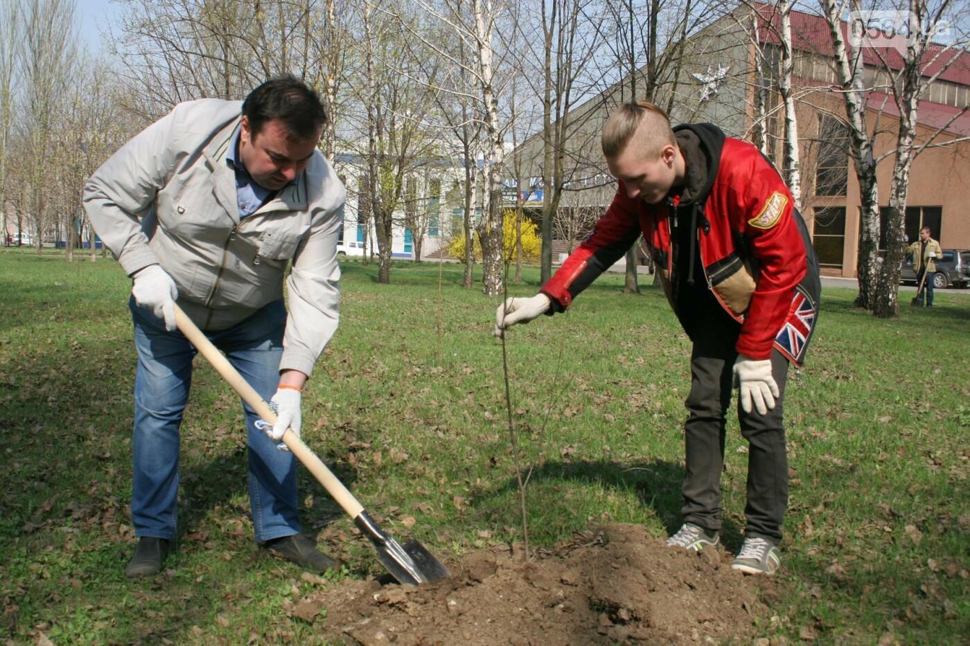 Криворожские журналисты с друзьями высадили более сотни деревьев и вывезли 4 грузовика мусора (ФОТО), фото-17