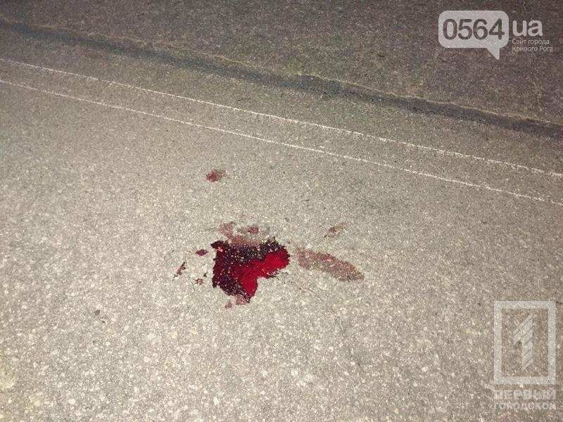 В Кривом Роге в жутком ДТП пострадала женщина, перебегавшая дорогу (ФОТО 18+), фото-3