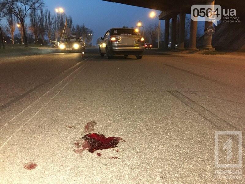 В Кривом Роге в жутком ДТП пострадала женщина, перебегавшая дорогу (ФОТО 18+), фото-6