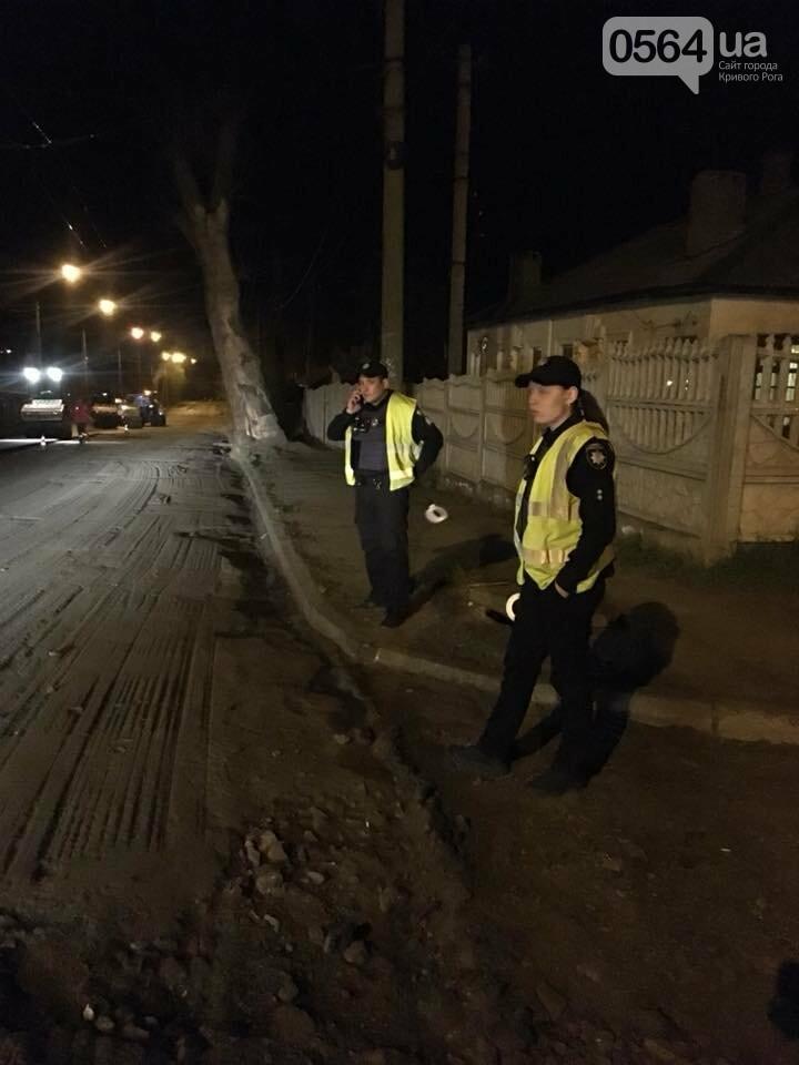 В Кривом Роге ремонтируют дороги и днем, и ночью (ФОТО), фото-28