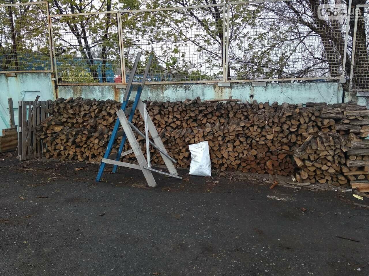 Прокуратура: В Кривом Роге лес уничтожали те, кто должен был его защищать (ФОТО), фото-8