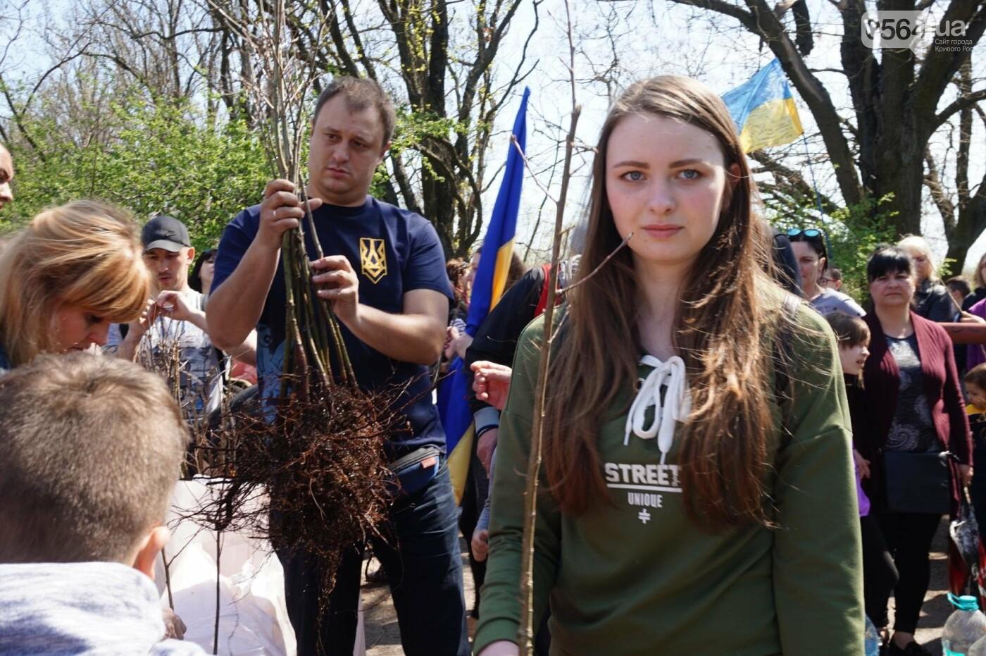 Как криворожане высаживали на Хортице дубраву в память о погибших Героях (ФОТО, ВИДЕО), фото-40