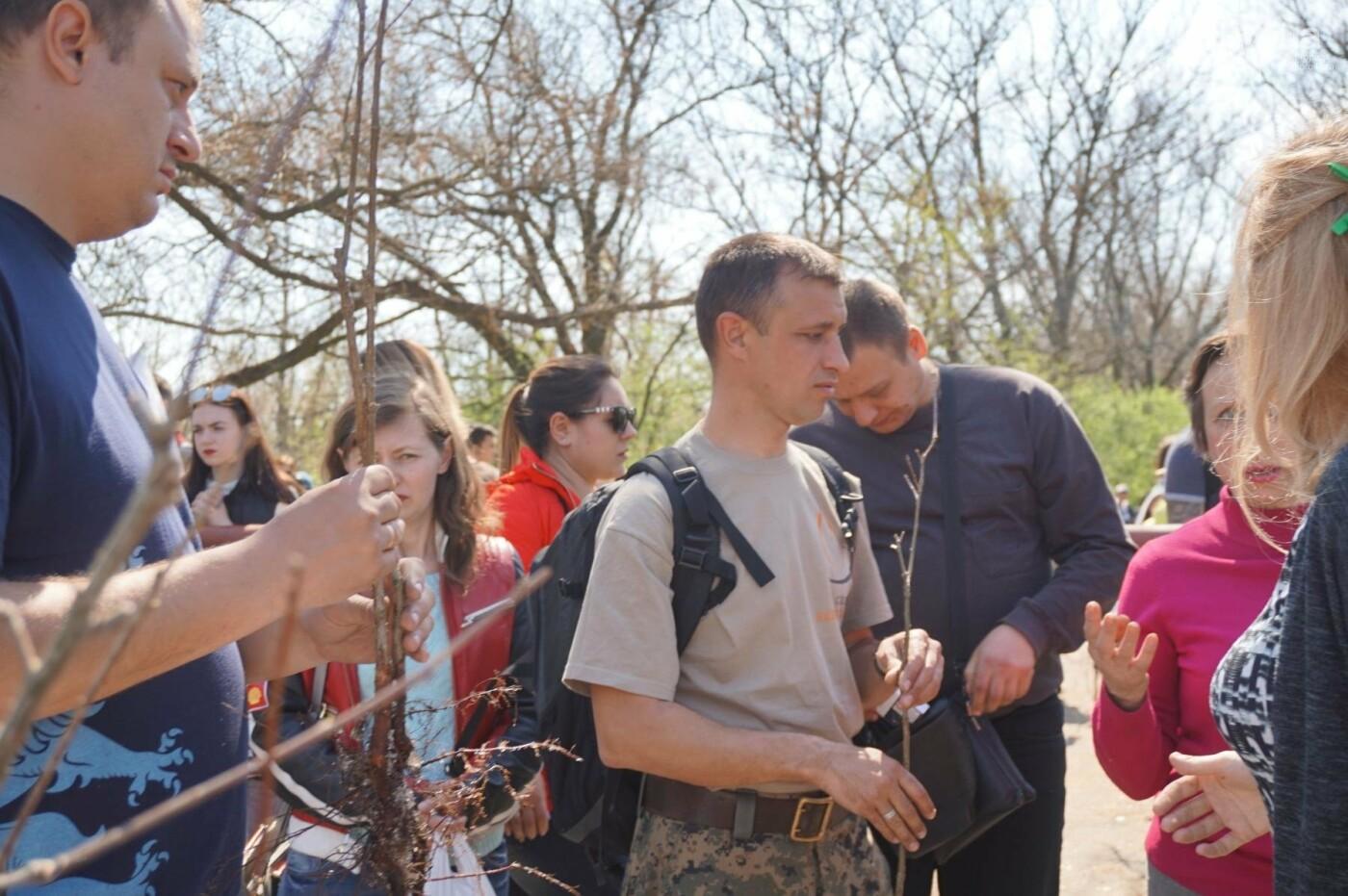 Как криворожане высаживали на Хортице дубраву в память о погибших Героях (ФОТО, ВИДЕО), фото-21