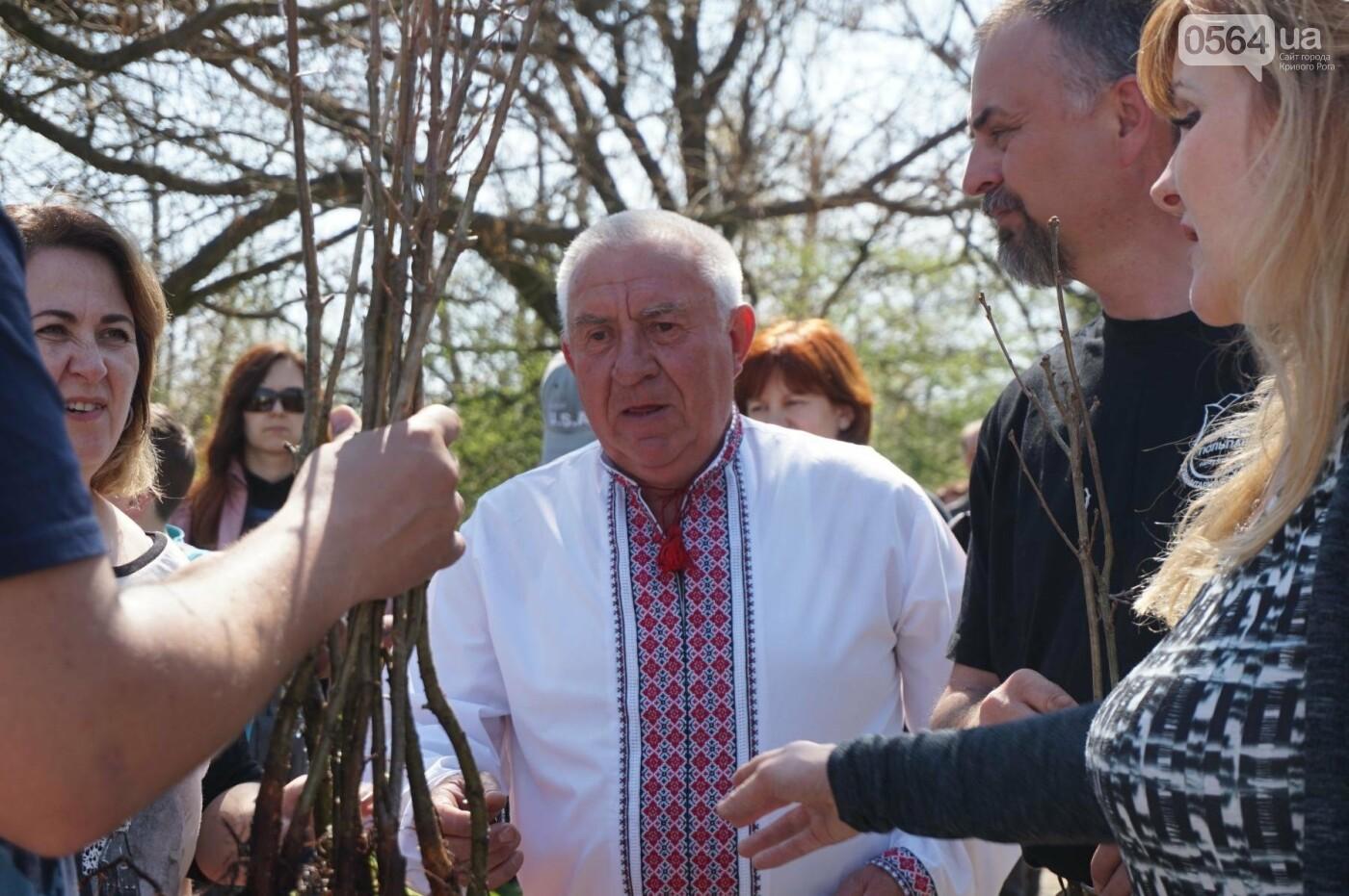Как криворожане высаживали на Хортице дубраву в память о погибших Героях (ФОТО, ВИДЕО), фото-22