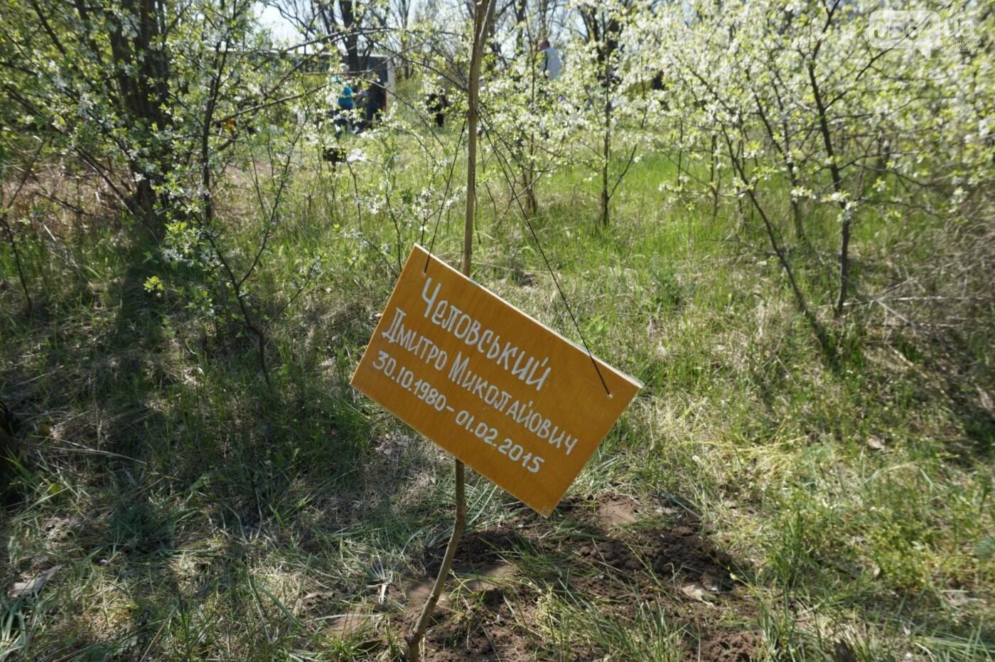 Как криворожане высаживали на Хортице дубраву в память о погибших Героях (ФОТО, ВИДЕО), фото-75