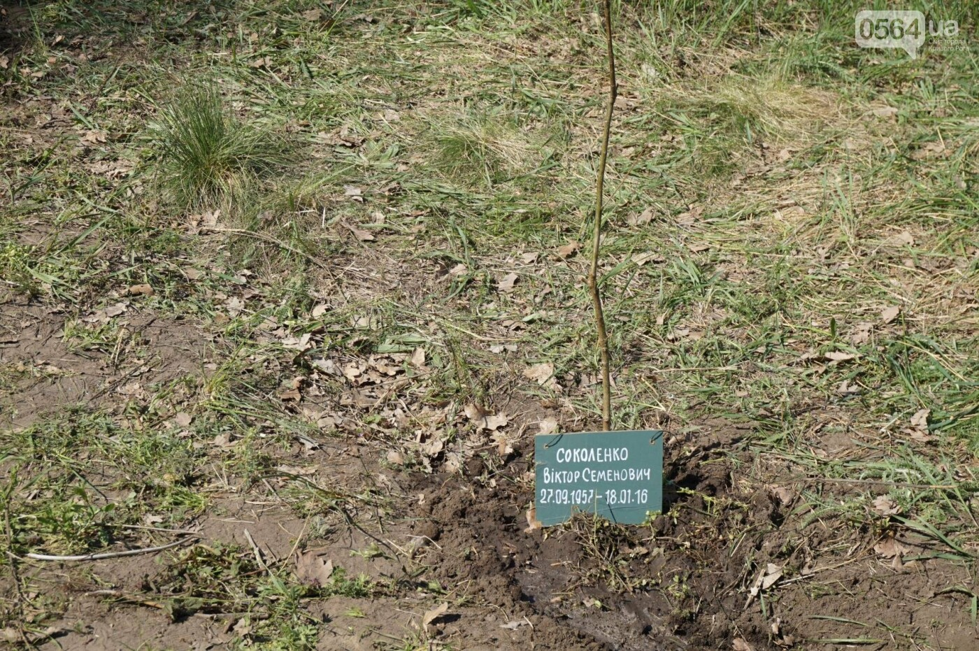 Как криворожане высаживали на Хортице дубраву в память о погибших Героях (ФОТО, ВИДЕО), фото-72