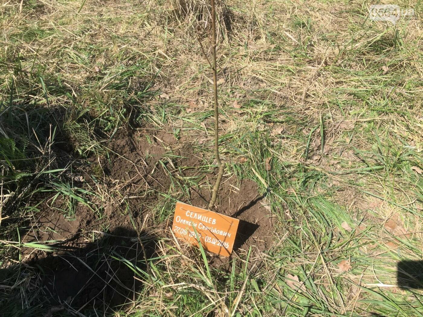 Как криворожане высаживали на Хортице дубраву в память о погибших Героях (ФОТО, ВИДЕО), фото-85
