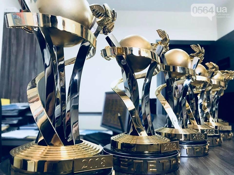Телетриумф - 2018: Криворожанка Елена Кравец стала лучшей актрисой телевизионного фильма, фото-1