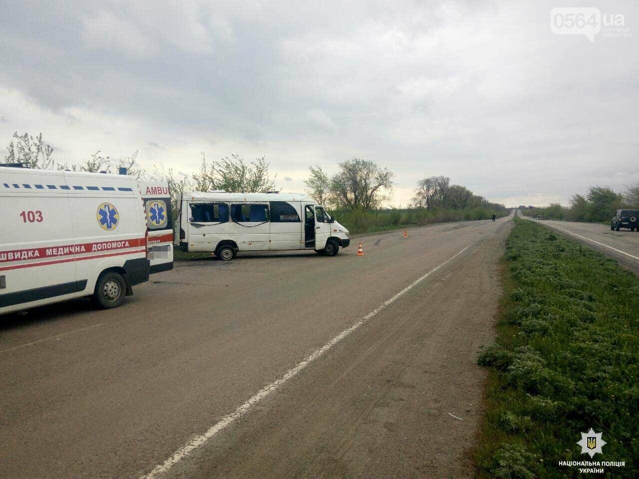 Полиция возбудила уголовное дело по факту ДТП на криворожской трассе, где пострадали 5 человек в маршрутке (ФОТО), фото-1