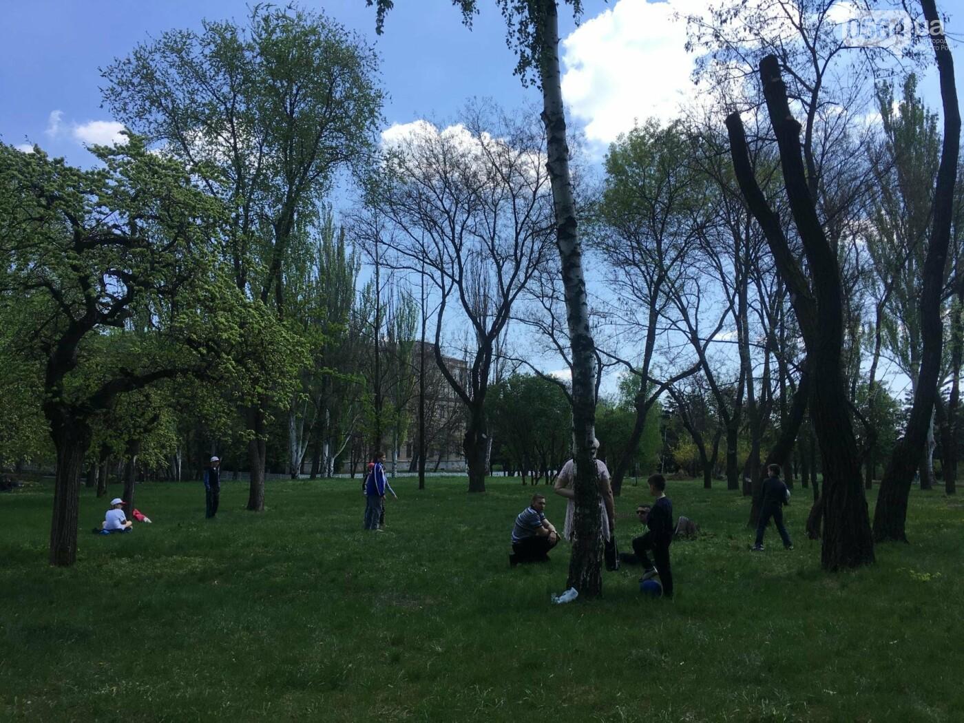 """""""В Европу без мусора!"""": криворожане помогли подготовить парк к Еврофесту (ФОТО), фото-84"""